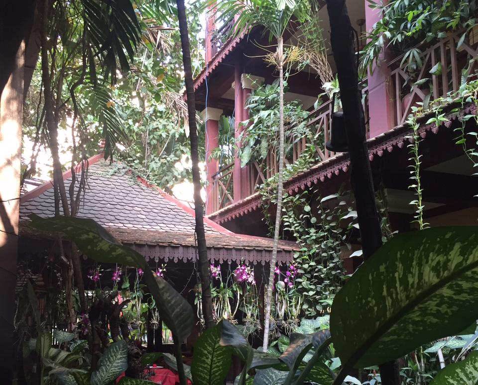 CambodiaPlants